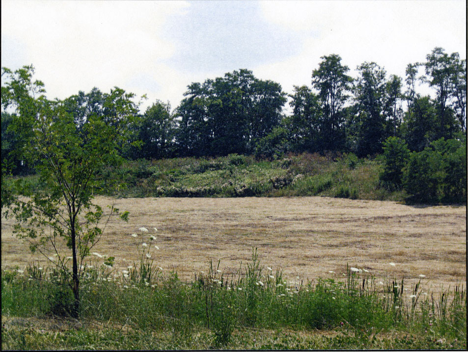Snow's Pond Dried Up in 2012